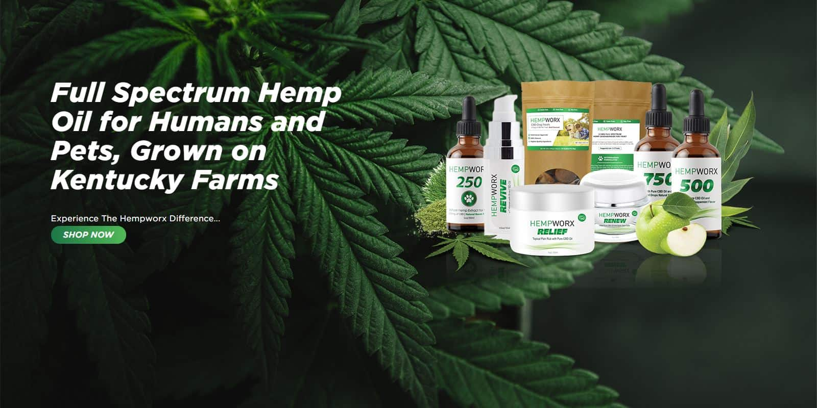 CBD Oil in Annarose, Texas
